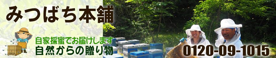 みつばち本舗:自家採蜜の国産ハチミツ  みつばち本舗