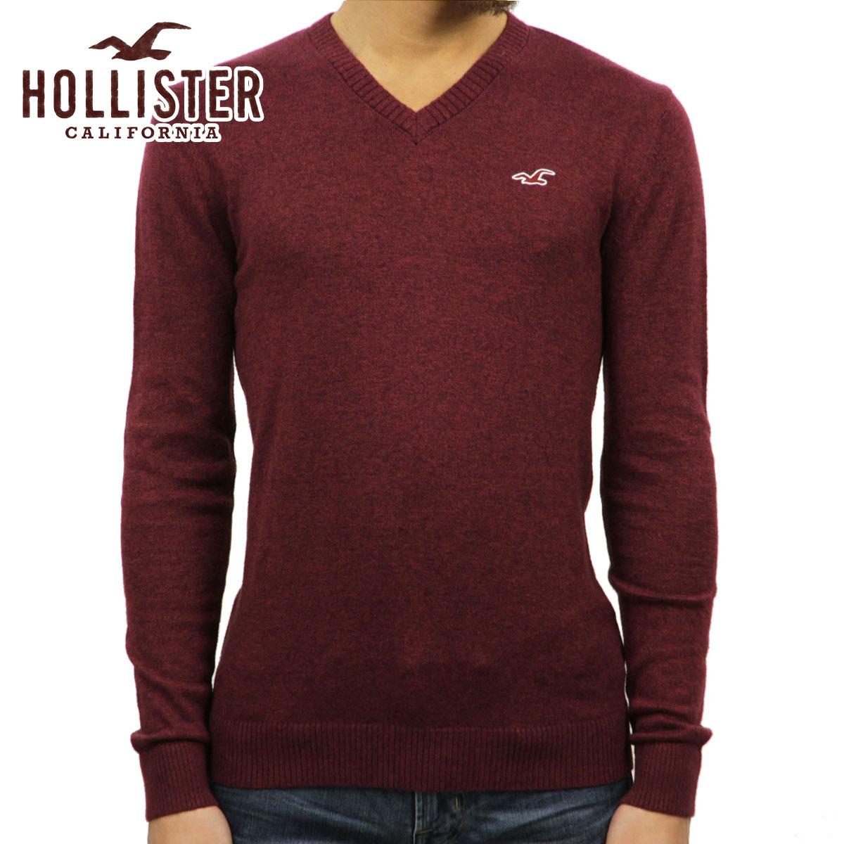 5%OFFセール 【販売期間 12/19 20:00~12/26 01:59】 ホリスター セーター メンズ 正規品 HOLLISTER Vネックセーター Lightweight V-Neck Sweater 320-201-0617-522