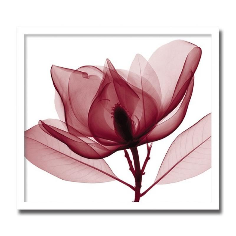 【クーポン配布中】アートパネル X-rey 写真 Red Magnolia 赤いモクレン 花 アートフレーム 玄関に飾る絵画 おしゃれ 絵画 インテリア 壁掛け 額入り 額装込 リビング 玄関 額 プレゼント 額絵 ギフト ポスター 額入り 油絵