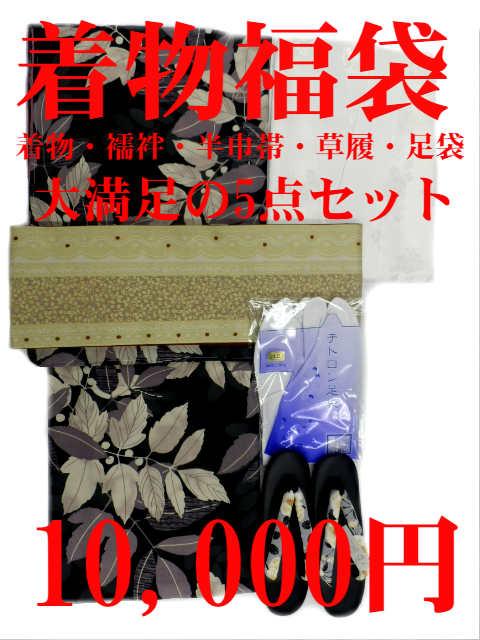 あす楽対応 大幅値下げ 着物 福袋 限定50セット販売 着物初心者にも 安心 小紋着物 5点セット