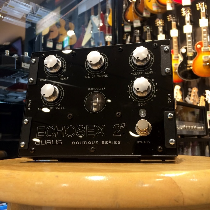 Gurus Amp/Echosex 2【在庫あり】