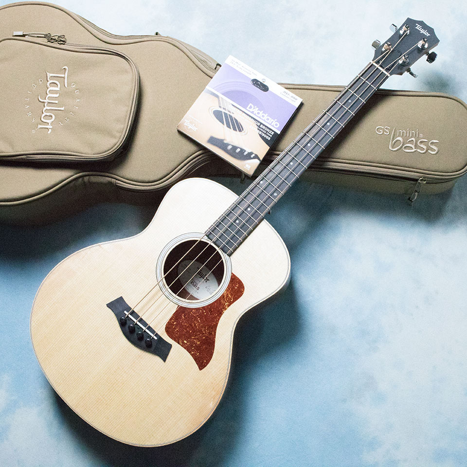 Taylor/GS Mini-e Bass 専用弦1セット付属【在庫あり】