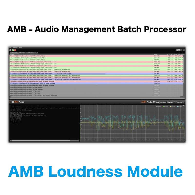Nugen Audio/AMB Loudness Module【オンライン納品】