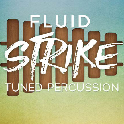In Session Audio/FLUID STRIKE【オンライン納品】【在庫あり】