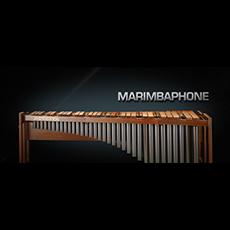 Vienna Symphonic Library/VIENNA MARIMBAPHONE