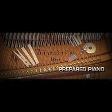 Vienna Symphonic Library/VIENNA PREPARED PIANO
