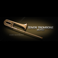Vienna Symphonic Library/VIENNA TENOR TROMBONE MUTED