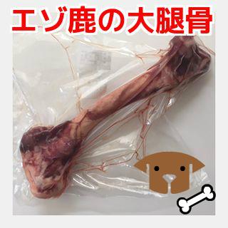 引出物 大型犬のストレス発散に最適な新鮮な生のエゾ鹿の大腿骨 犬用 無添加おやつ 開店祝い エゾ鹿肉 生の大腿骨ペットフード 生肉 ドッグフード ペット ホネ