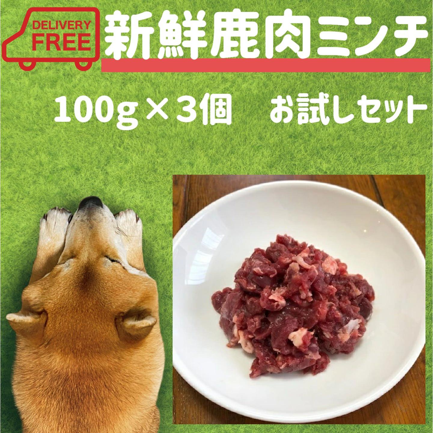 愛犬がご飯を食べない 食欲がないとお悩みの方にお勧めの生鹿肉 ドッグフードのトッピングにも最適 使いやすい小袋タイプ 送料無料でお試しに最適な新鮮鹿肉で美味しさも抜群です 犬 生肉 新鮮鹿肉ミンチ 100g×3個 送料無料 お試し 犬がご飯を食べない 食欲ない 全店販売中 わがまま おすすめ 人気 通販 小分け ごはん ミユドラ 栄養 歯石 食欲不振 生食 国産 ご飯 鹿 新作からSALEアイテム等お得な商品満載 小袋 手作り 小型犬 専門店 ドッグフード 消化 中型犬 老犬 ペットフード 高齢犬