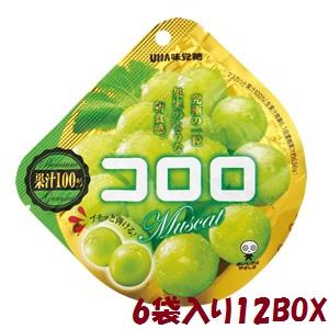 【卸価格】コロロ マスカット 40g×6袋入り12BOX【UHA味覚糖】果実のような新食感グミ 大箱1カートン
