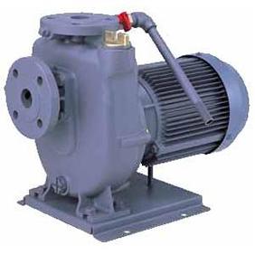 エバラポンプ FQD型 自吸ポンプ 60Hz 40FQD61.5B | 渦巻ポンプ 渦巻きポンプ 自吸うず巻ポンプ 陸上ポンプ 揚水ポンプ 給水ポンプ 自給式 多段ポンプ うず巻ポンプ 自吸式ポンプ 送水ポンプ 加圧ポンプ 自吸式 縦型ポンプ 多段渦巻ポンプ 荏原ポンプ 荏原製作所