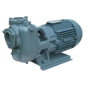 エバラポンプ SQD型 自吸ポンプ 60Hz 32SQFD6..25B
