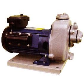 寺田ポンプ製作所 陸上ポンプ 鋳鉄製 直動自吸式 MP形 60Hz 屋外モーター付き MP3N-0041R