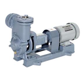 エバラポンプ RQ型 自吸式渦流ポンプ 50Hz 20RQE5.2B