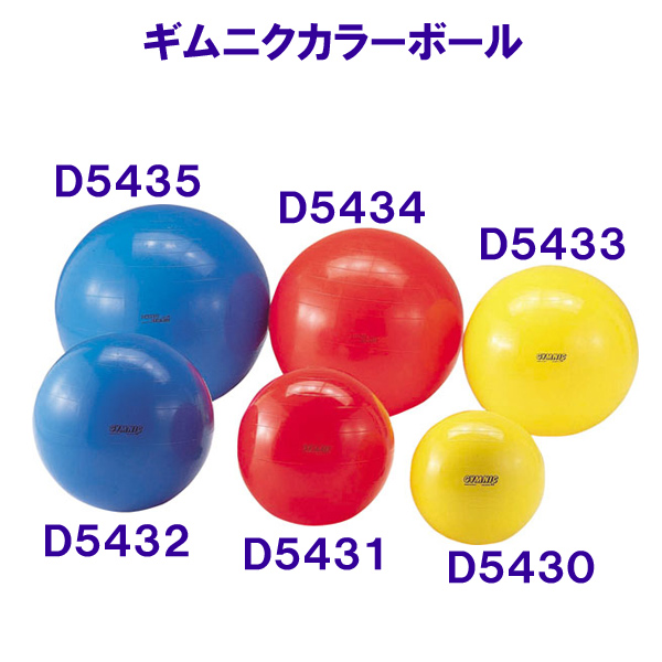 【20%OFF】ギムニクカラーボール65 D5432