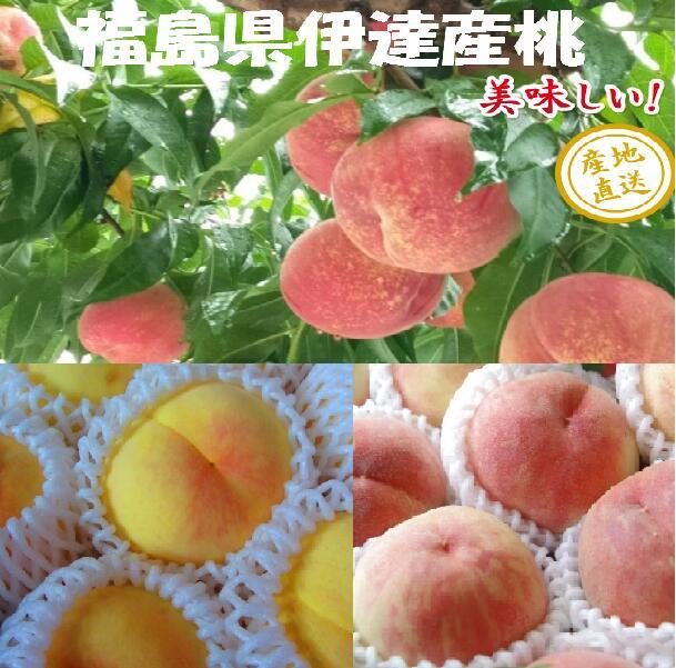 時期に採れた桃を発送します 新作 冷蔵にて発送する場合があります 白桃 黄桃 詰合せ 2.7kg箱 8~12玉 福島 四国 九州は送料600円増し 伊達産 もも 桃 北海道 中国地方は400円増しです 入手困難