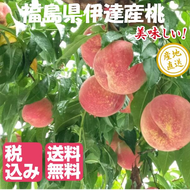 時期に採れた桃を発送します 冷蔵にて発送する場合があります 1.8kg箱 6~7玉 福島県 伊達産 桃 もも はつひめ あかつき 九州は送料600円増し お見舞い 川中島 まどか 全国どこでも送料無料 幸あかね 中国地方は400円増しです 白桃 など 北海道 四国