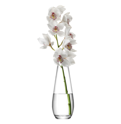 LSA FLOWER Tall Stem Vase ベース H290mmクリアー<花瓶>