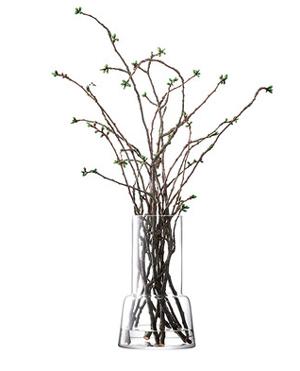 LSA CHIMNEYVASE ベース(花瓶)H450mm【CLEAR】<箱入り>