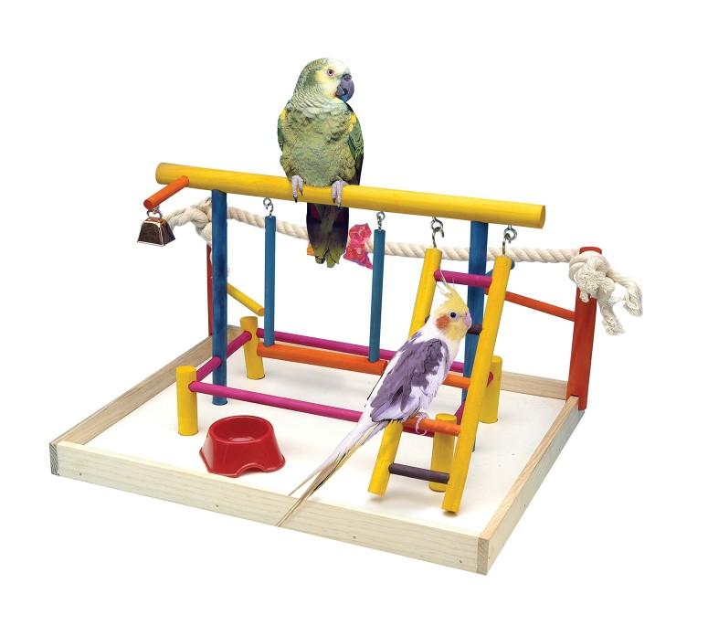 バードアスレチック オウム ヨウム スタンド  Penn-Plax Bird Life Activity Center / Perfect For Cockatiels, Conures, and Parakeets/Budgies - Extra Large Size 送料無料 【並行輸入品】