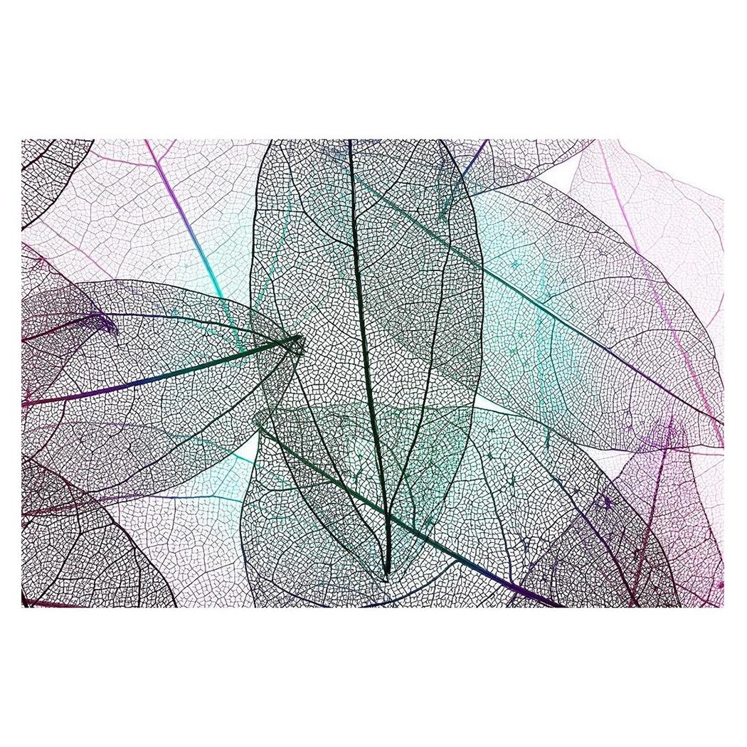Art Panel multicolor decoretive skelrton leaves アートパネル モダン アート 美工社 フレームレス ギフト 装飾インテリア 取寄品 マシュマロポップ