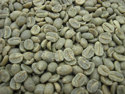 コーヒー生豆コロンビア スプレモ 1kg ☆送料無料☆ 当日発送可能 40%OFFの激安セール