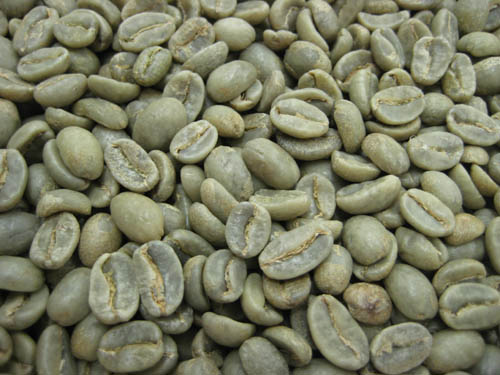 コーヒー生豆コロンビア オーガニック(有機栽培) 1kg【】