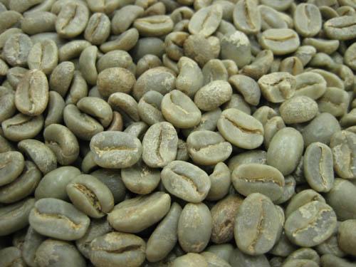 コーヒー生豆ペルー オーガニック 人気ブレゼント ◇限定Special Price 1kg 有機栽培