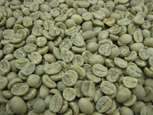 コーヒー生豆タンザニアAA 1kg【】
