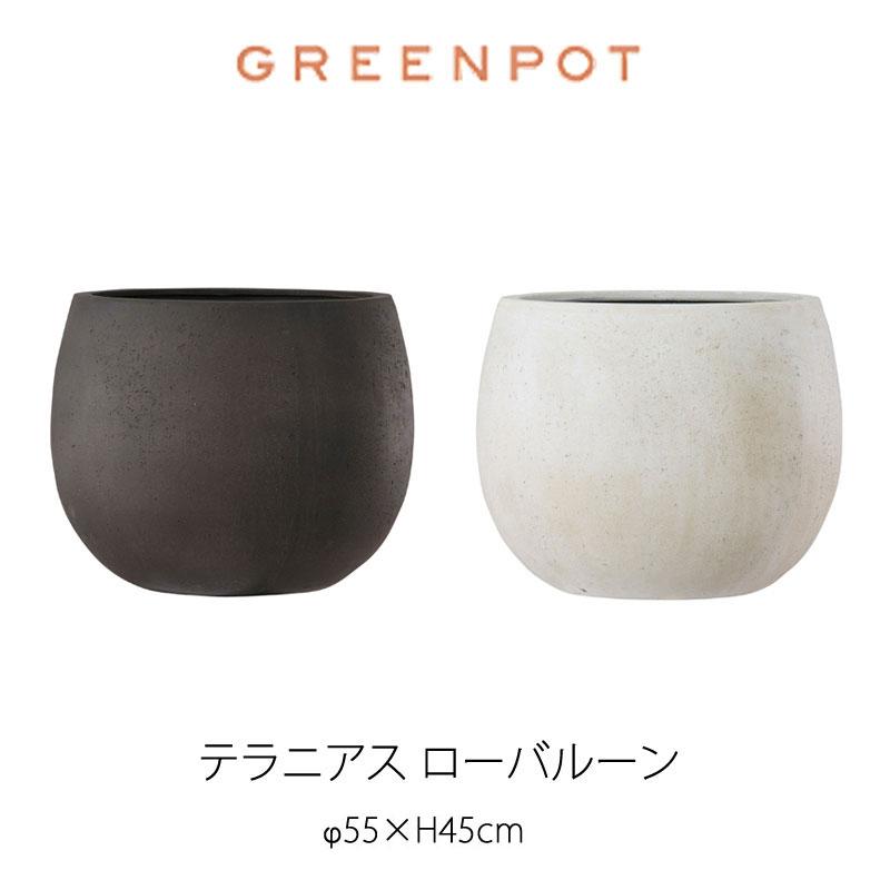 GREENPOT テラニアスローバルーン 55植木鉢 ポット [mmis]【送料4000円】 失敗しないインテリア 年末インテリア