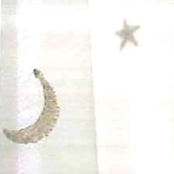 オーダーカーテン 1.5倍ヒダ(Aフック)Sisyuuhoshi 刺繍ホシ レース幅200/400cm×丈205cm-260cm 新生活 気持ち切替スイッチ インテリアコーディネート