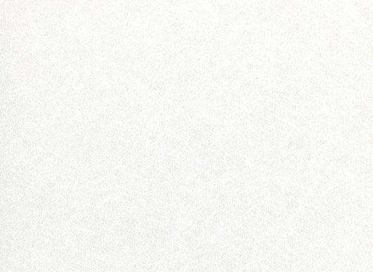 日本デコラックス パニートスリムキッチンパネル(バスルーム・サニタリー・トイレスペース兼用)FX-3241G コクーンホワイト サイズ3mm×910mm×2420mm (3×8)
