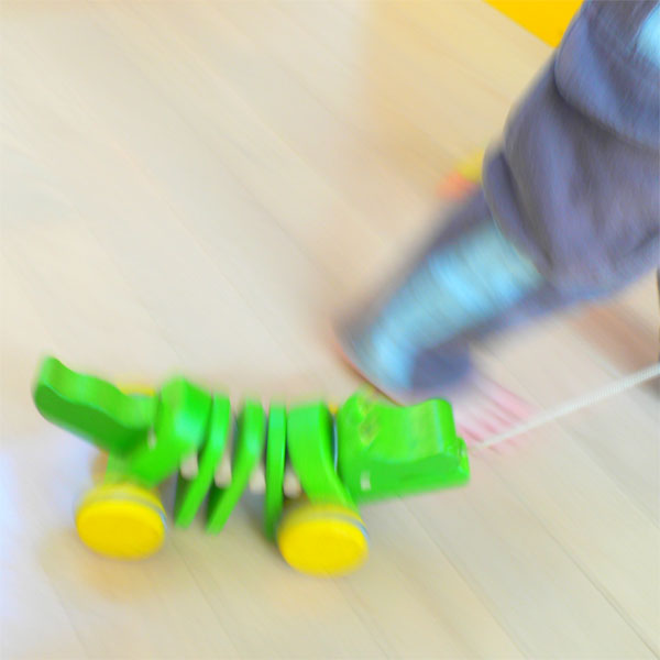 Wooden toy plants Plantoys purity & push toy ダンシングアリゲーター 1 year old: 1-year-old man: woman