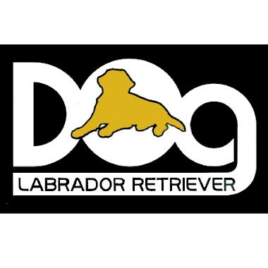 ランキング入賞 わんちゃんシルエット部分3色から選べます ラブラドールレトリバー カッティングステッカー dog小文字 定形外郵便送料無料 切文字 シール 新作販売 市場 犬種カラー選べるシルエット