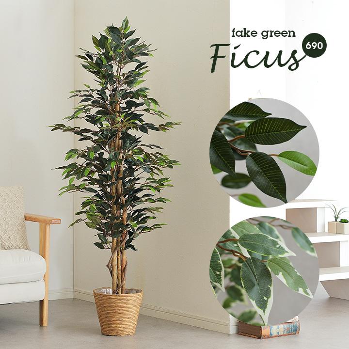 【割引クーポン配布中】人工観葉植物 フェイクグリーン Ficuse(フィカス) 690 H150cm・H160cm 2種対応 人工植物 観葉植物 おしゃれ フェイク 造花 大型 グリーン インテリア
