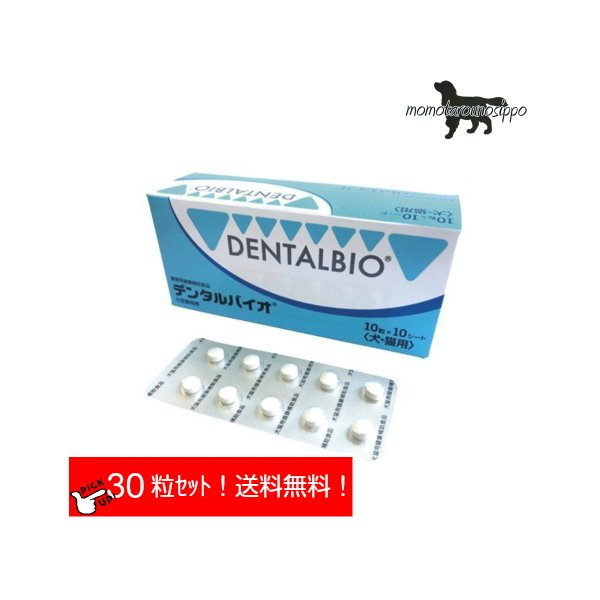 口臭抑制 口腔の予防と歯周病予防のサプリメント 40%OFFの激安セール デンタルバイオ 10粒×3シート 15kg以上の犬1日3粒 送料無料 共立製薬 10日分お試し ポスト投函便 誕生日 お祝い 犬猫用