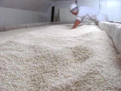 コシヒカリの米麹1kg×4袋入り 生麹・冷凍 まとめ買いでお買い得セット(甘酒の麹や塩麹作り、味噌作りなどに最適です)