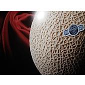 メロン最高級クラウンマスクメロン【2個×1.4kg】(静岡県産・遠州)は、メロンの王様、王冠印のトップ商品です。糖度も高く、肉質も厚く味・香り・形と3拍子揃った日本一の美味しさと言われるメロンです。めろん