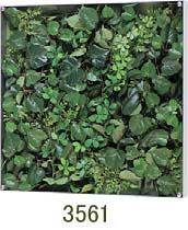 大感謝価格『薄型BOXフレーム ウォールグリーン 3561』『メーカー直送品。代引不可・同梱不可・返品キャンセル・割引不可』観葉植物 壁掛け ディスプレイ 飾る インテリア 雑貨 グッズ 薄型BOXフレーム ウォールグリーン 3561送料無料10P03Dec16