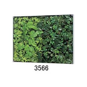 大感謝価格『薄型BOXフレーム ウォールグリーン 3566』『メーカー直送品。代引不可・同梱不可・返品キャンセル・割引不可』観葉植物 壁掛け ディスプレイ 飾る インテリア 雑貨 グッズ 薄型BOXフレーム ウォールグリーン 3566送料無料10P03Dec16