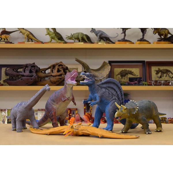 大感謝価格『恐竜 ビニールモデル プレミアムエディション 5種類セット+ストラップおまけ付き』【5月下旬出荷】, ミマタチョウ:5caf4c54 --- economiadigital.org.br
