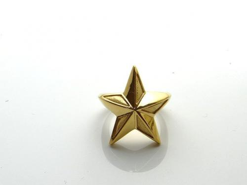 『KR-272GD NW-THE STAR リング』(10-15営業日前後で出荷、割引不可)誕生日 プレゼント メンズ レディース アクセサリー 指輪 リング
