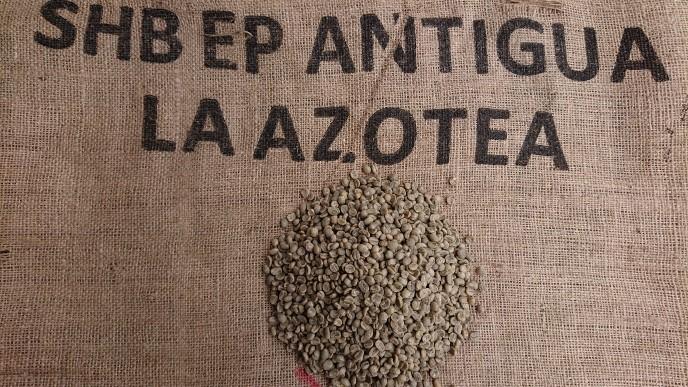 グァテマラ アンティグア アゾテア農園 SHB  5kg    (コーヒー生豆)