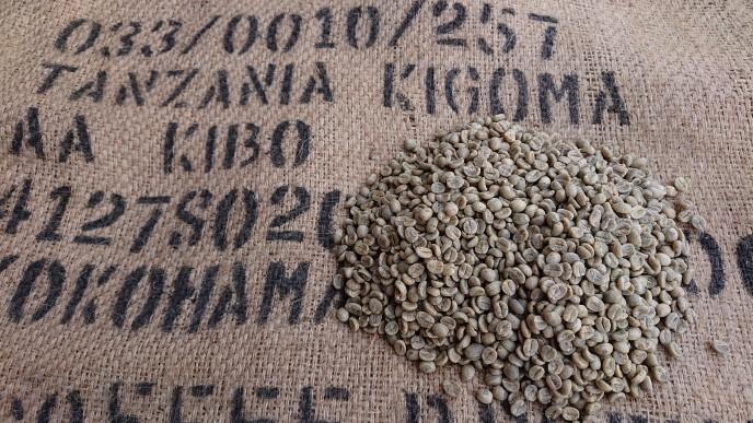 タンザニア キゴマ AA KIBO  5kg      (コーヒー生豆)