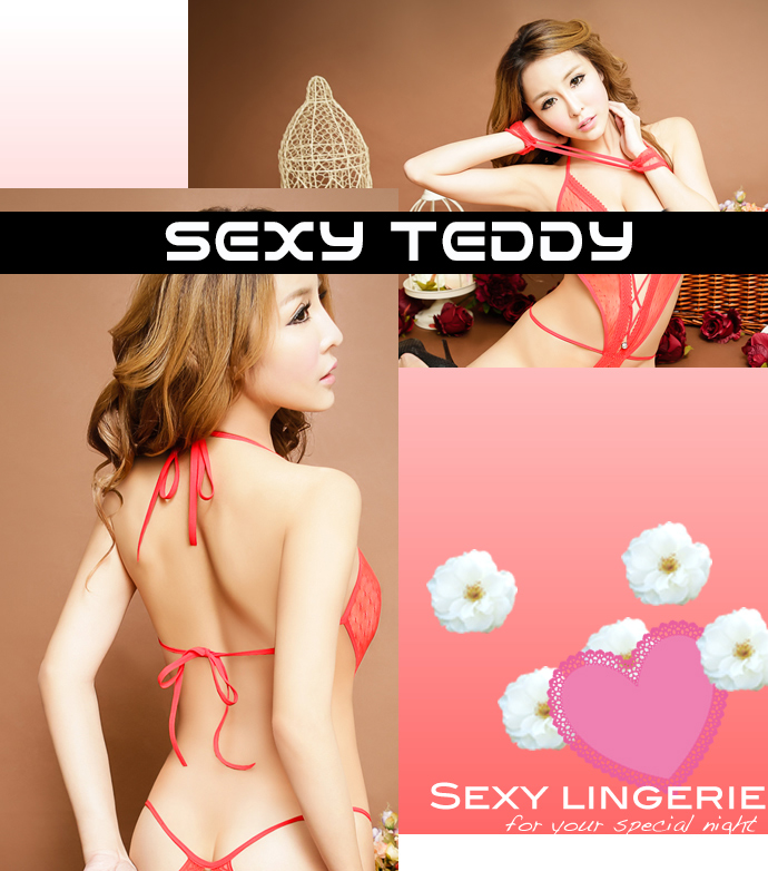Adult lingerie and toy