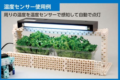 供Artec(atekku)塊機器人使用的溫度傳感器