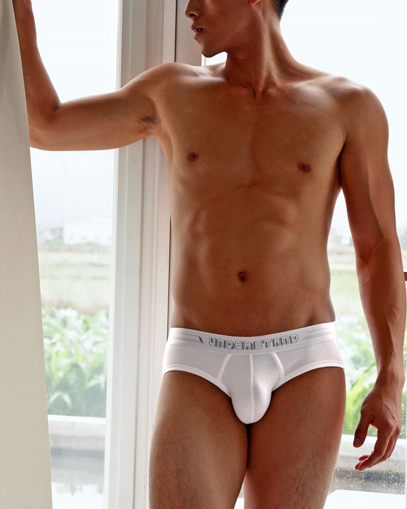 UNDERSTAND アンダースタンド ローライズブリーフ (白:White) メンズ 男性下着 メンズ下着 パンツ 無地 ベーシック シンプル
