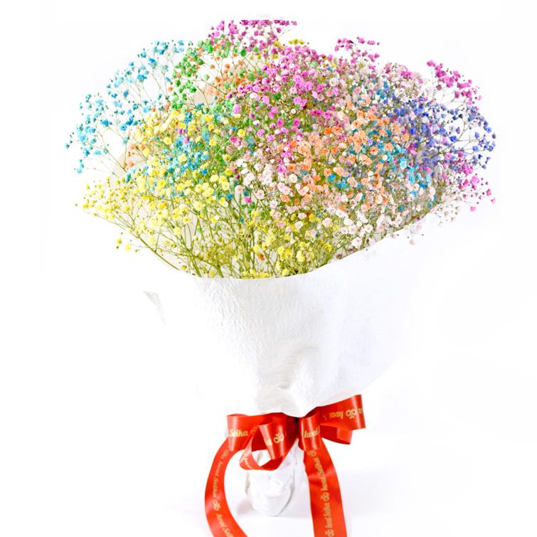 母の日 かすみ草 花束 ≪七色に輝く≫ボリューム満点 7色のロマンチックかすみ草 お誕生日 お祝い お見舞い 記念日のプレゼントにおすすめ いわい生花 花 ロマンチックかすみ草 プレミアム ふわふわブーケ10本 キラキラ 国産品 七色 退職 誕生日 観劇 ギフト 入学式 歓迎会 送別会 レインボー 輝く カスミソウ 結婚式 高い素材 送料無料 プレゼント 子供 お取り寄せ カスミ草