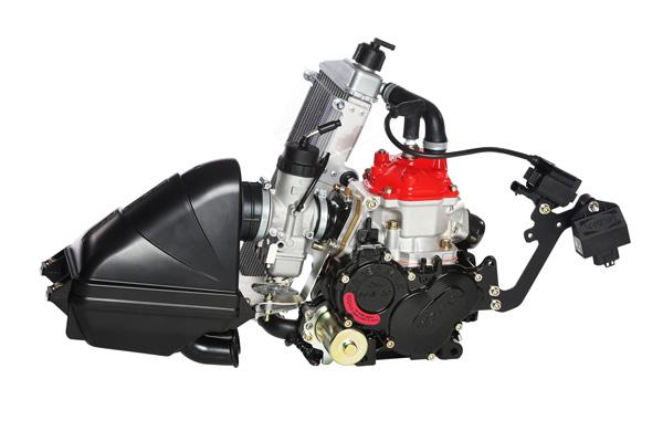 ROTAX 125 Junior MAX EVO ASSY レーシングカートエンジン