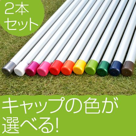 物干し竿 3m 2本セット 1本竿 普通の太さ 30パイ×3mシルバ色 ベランダに最適 おしゃれ【保証付】【日本製】